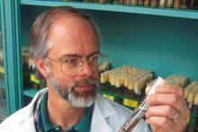 Scientist at work (iStock)