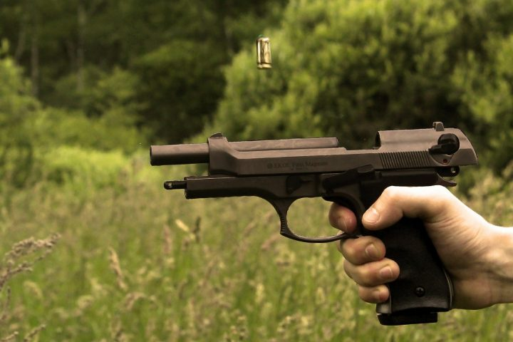 peer reviewed articles on gun control