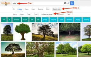 How to Google Image Search