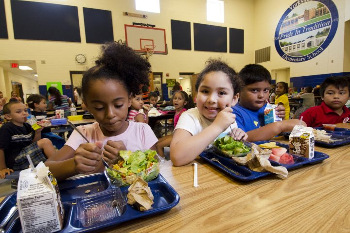 What the Lawmakers Are Doing to Influence the Standard of Feeding in Public Schools