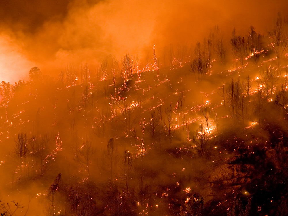 Wildfires, health and climate change: Research and resources