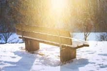 Bench covered in snow
