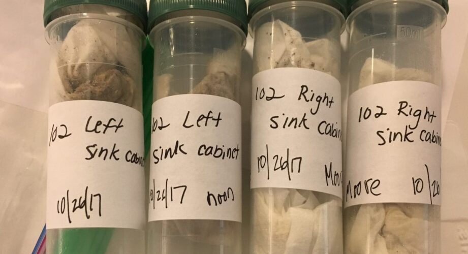 Sample tubes with dust wipes (Wendy Ruderman)