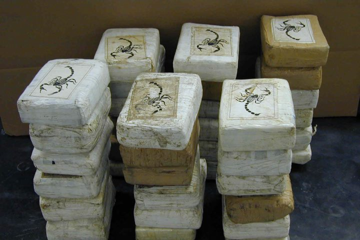 cocaine bricks